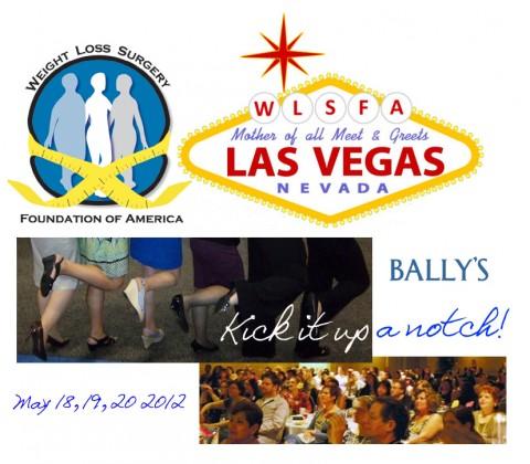 2012 WLSFA MEET & GREET :  LAS VEGAS!