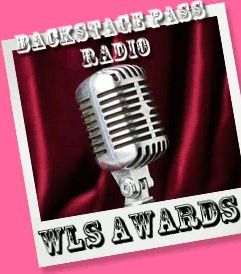 2013 WLS AWARD WINNERS